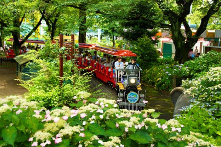 http://www.toshimaen.co.jp/
