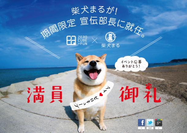 柴犬まるが宣伝部長に就任!?