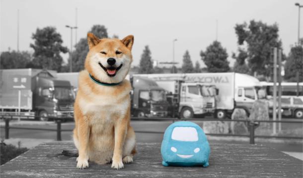 時間とお金がかかっても【安全】なのが一番大切!!柴犬まるの西日本出張記パート2