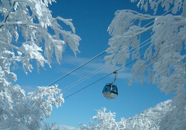 青森でスキーするなら!おすすめのスキー場3選