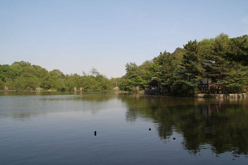 1024px-Nerima_Syakujii_park_sampoji_pond