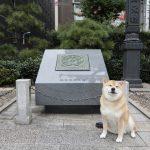 歴史ロマンに注目グルメも!柴犬まる、日本橋の魅力について語る