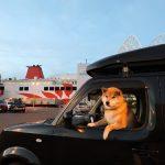 注目のPA、別荘も登場!柴犬まるが紹介する九州ぶらり旅(前編)