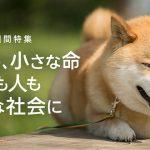 9月20日から26日は動物愛護週間!柴犬まる、東京ガーデンテラス紀尾井町へ行く
