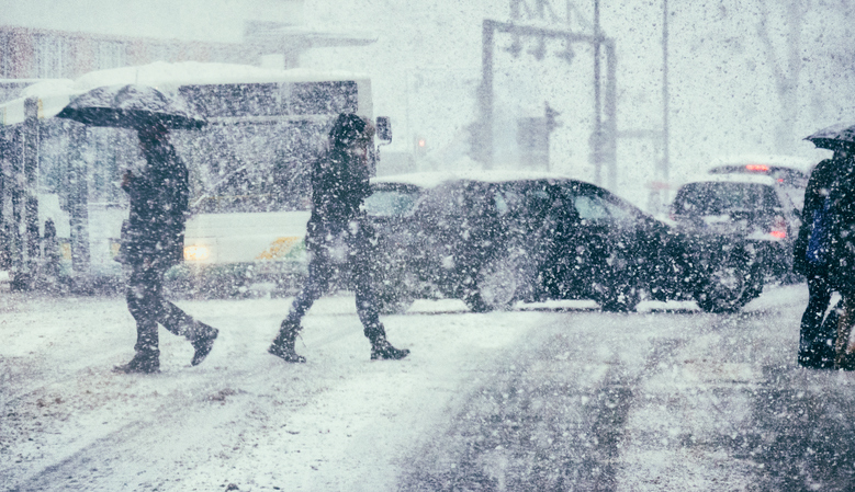 来年の冬に向けて今から備えたい!雪道を安定して走れるクルマ6選