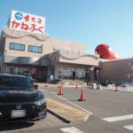 「めんたいパーク大洗」までドライブ!明太子の無料試食に、工場見学も!