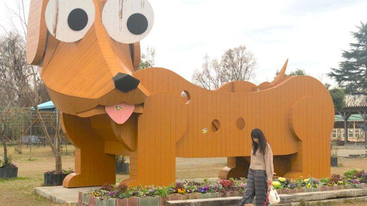 犬好きにとっての天国⁉︎ワンコとドライブしながら、茨城の「つくばわんわんランド」に行ってきた!