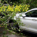 台風で自動車の損害を減らすには?台風や地震(天災)に対応した保険はある?